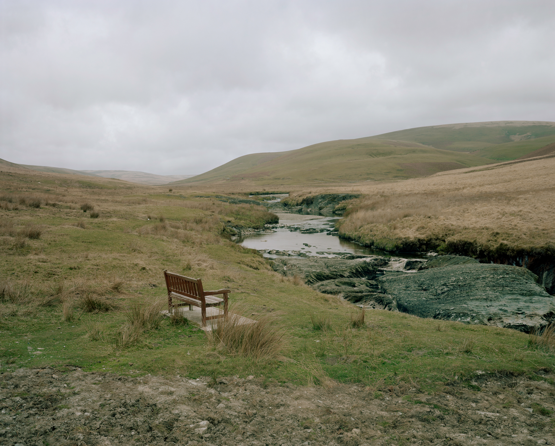 Rewilding Photographs Wales