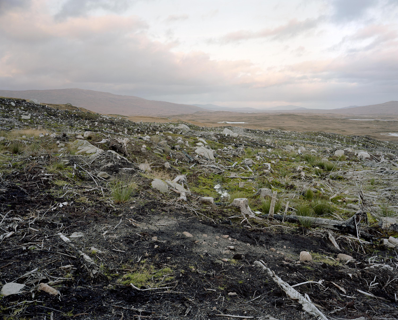 Photograph of environmental degradation