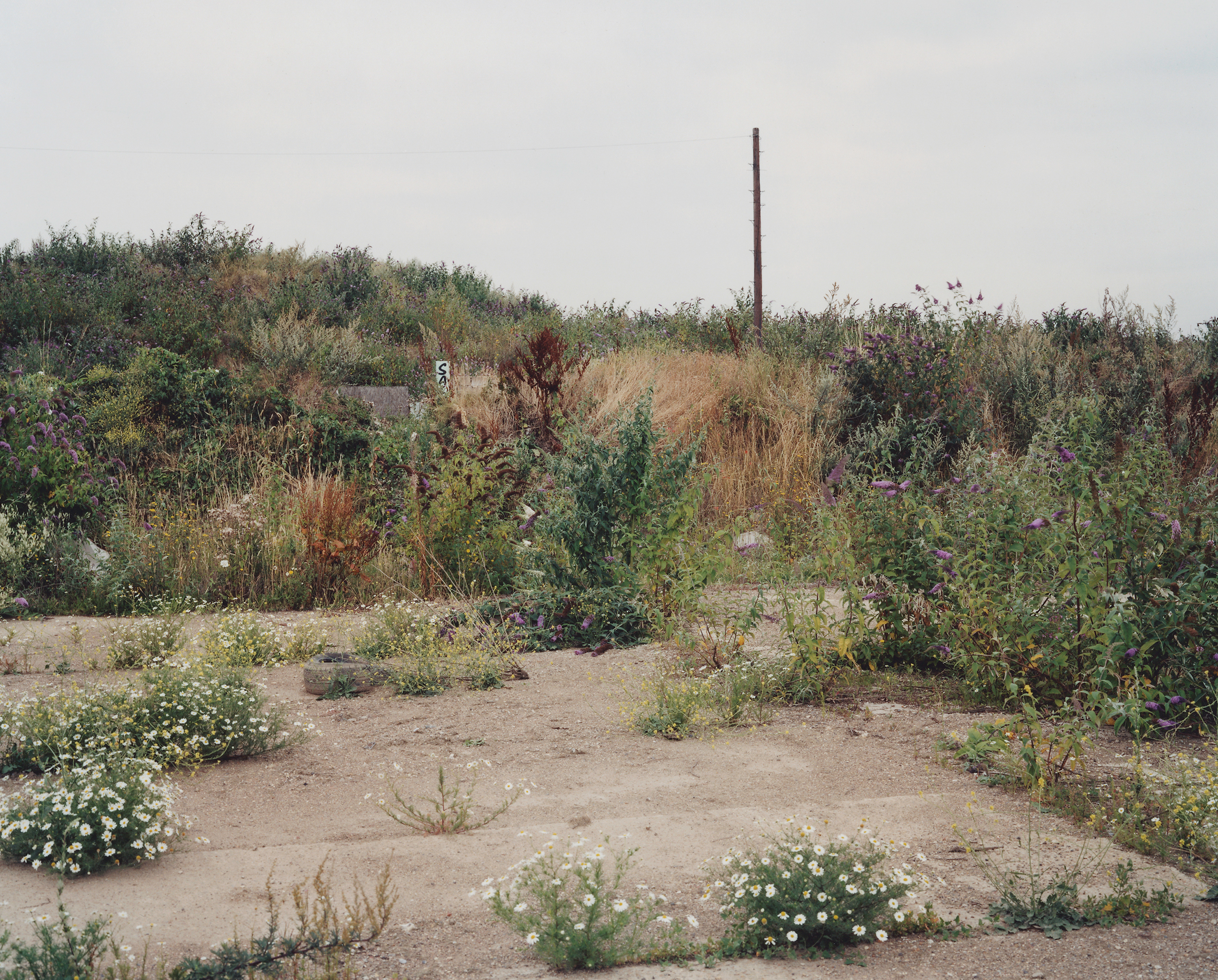 Contemporary Photography East London