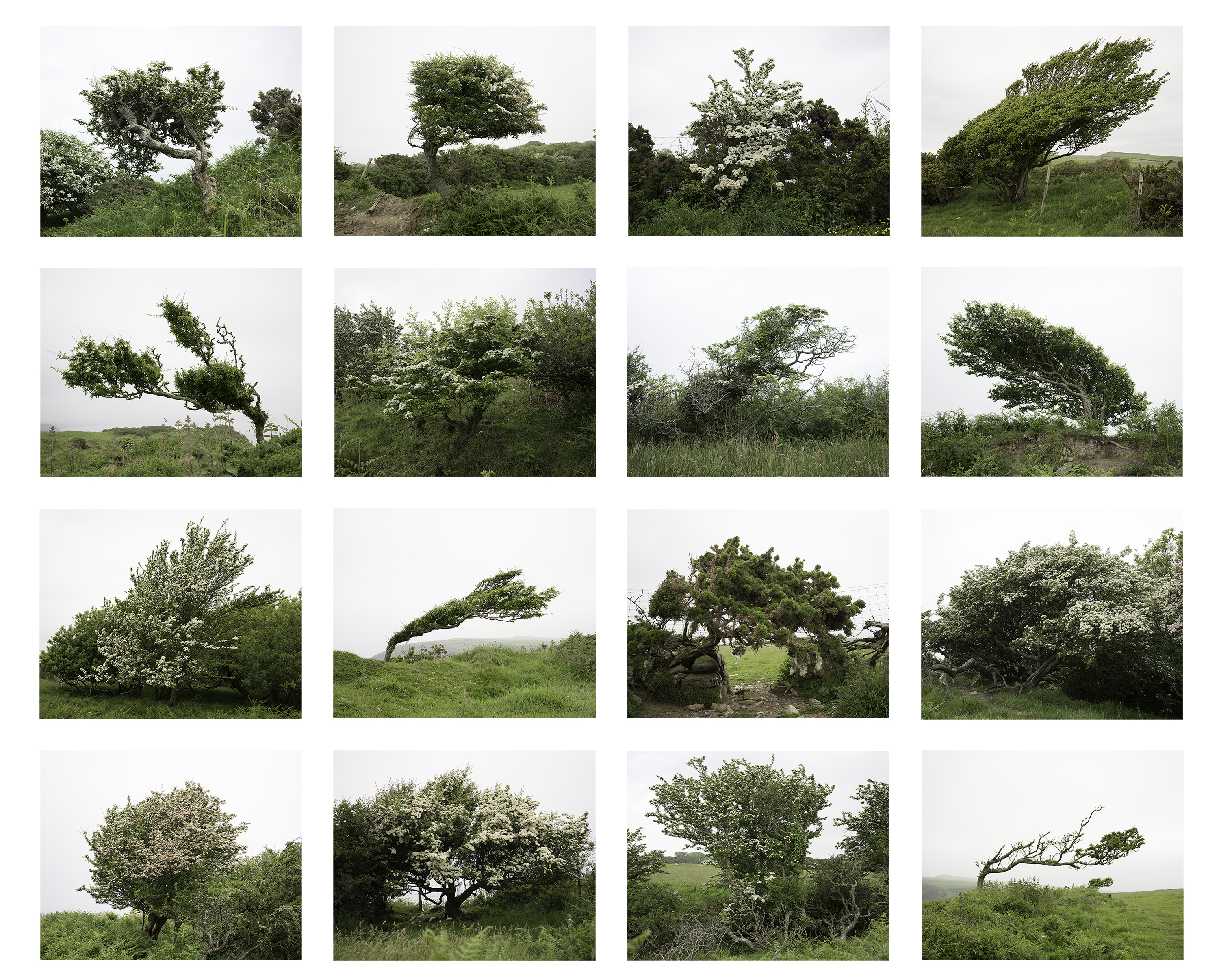 Contemporary Landscape Photography in UK